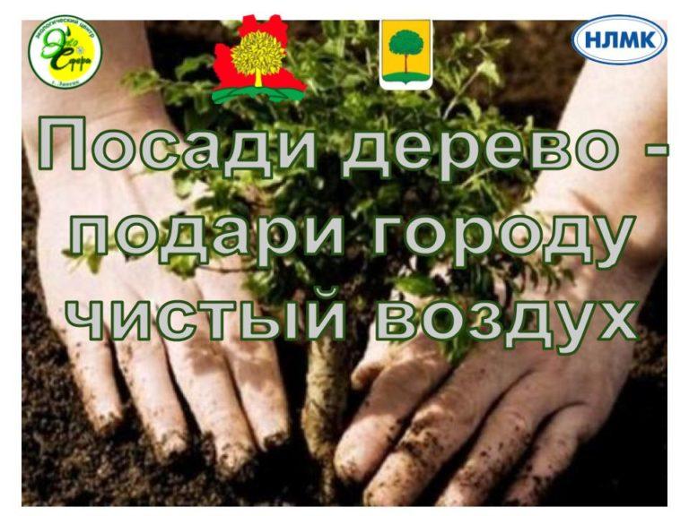 Онлайн – регистрация участия в посадке деревьев 29 сентября 2018 г. 10-00